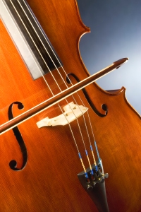 """""""Cello study"""" by MichaelMaggs - Own work. Licensed under CC BY-SA 3.0 via Wikimedia Commons - http://commons.wikimedia.org/wiki/File:Cello_study.jpg#mediaviewer/File:Cello_study.jpg"""